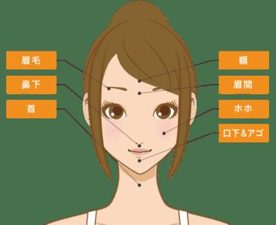アリシアクリニック顔脱毛施術範囲