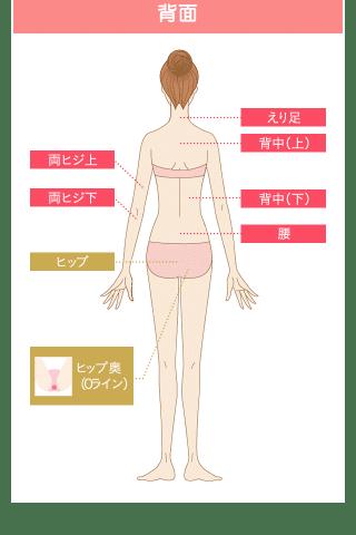 銀座カラー全身脱毛施術部位背面