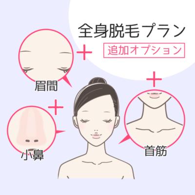 オプションで小鼻、眉間、首筋が追加できる
