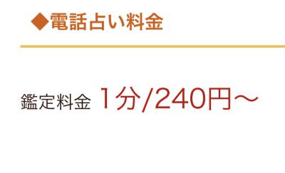 電話占いニーケ 鑑定料金